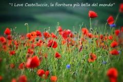 2-castelluccio-daiva-mikuckaite-19