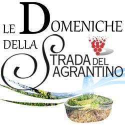 Le Domeniche del Sagrantino