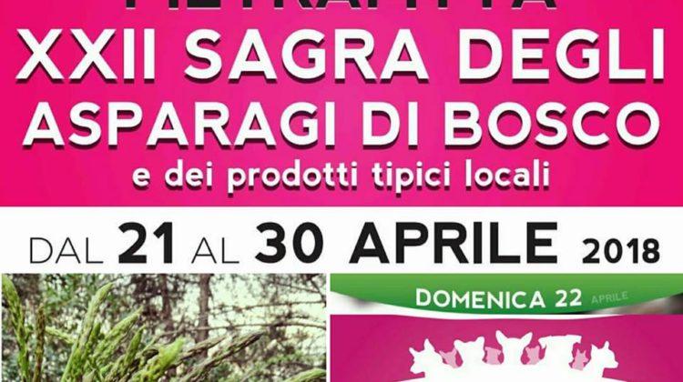 sagra-degli-asparagi-di-bosco-2018