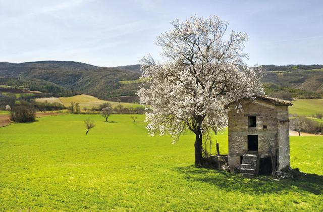 valle del campiano - primavera