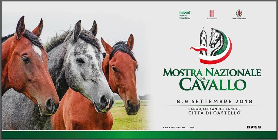 mostra-nazionale-del-cavallo-2018