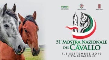 mostra-nazionale-del-cavallo-2019