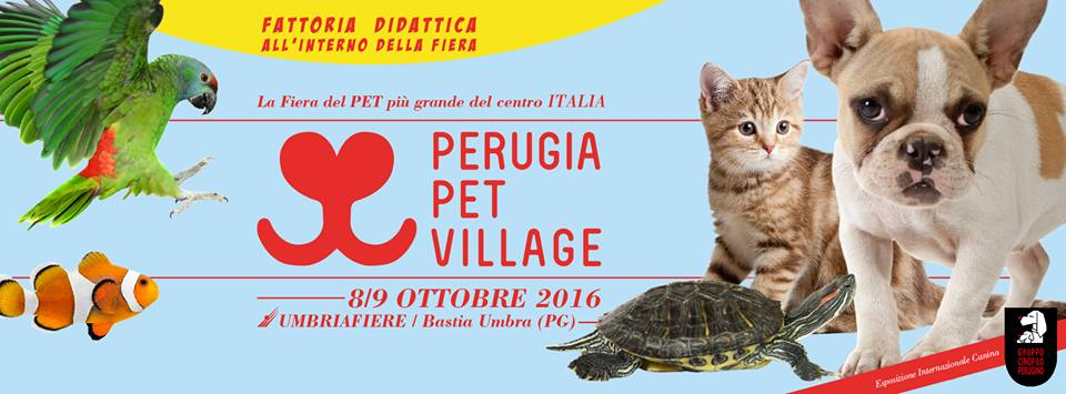 Perugia Pet Village