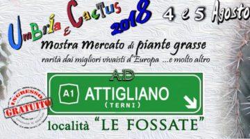 umbria-e-cactus-2018
