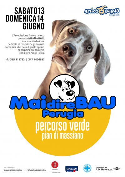 maidirebau