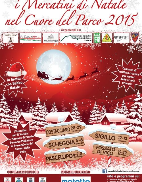 500x705-images-stories-eventi-mercatini2014